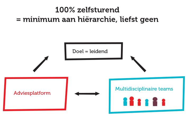 organogram zelfsturende organisatie