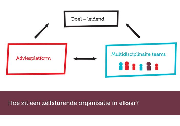 structuur van een zelfsturende organisatie